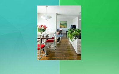 اِن ڈور پلانٹس Indoor plants