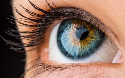 آنکھ کی سیر