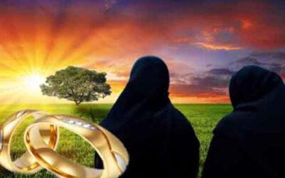 کیا عورت سے شوہر کے لیے دوسری بیوی تلاش کرنے کا مطالبہ درست ہے؟